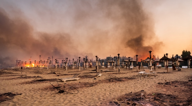 Ülkenin güney bölgeleri ve Sicilya Adası'nda süren yangın sayısı 800'ü geçti: İtalya